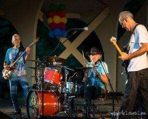 Hummingbird Band